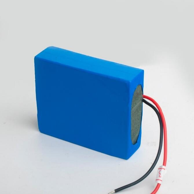 4800mah Super li-ion mini 12v rechargeable battery